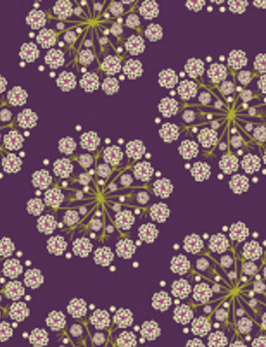 QueenAnne'sLace21222_v_purple